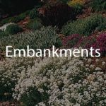 embankment photos