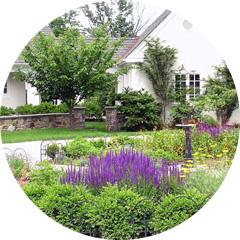 Perennial Flower Gardens
