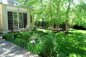 sustainable landscaping in the back yard, patio, screening plantings and trees