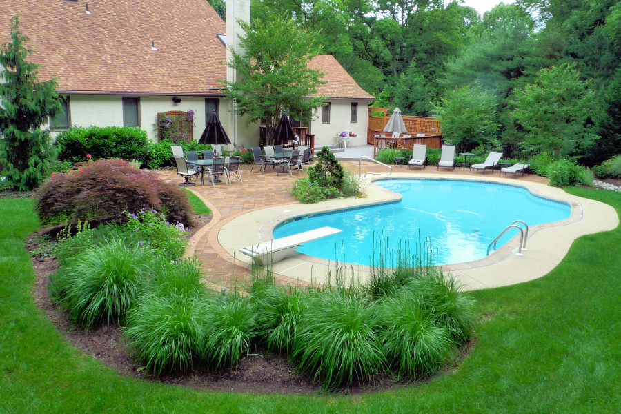 Swimming Pool Landscaping Photos Creative Landscapes